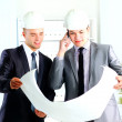 Two architects discussing new project at meeting  — Stock Photo