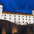 Castle of Bratislava - Stock Photo