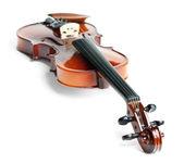 Mentira violín hacia adelante del cuello — Foto de Stock