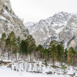 Snow-covered mountains — Foto Stock