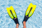 Flippers in the pool — Stock Photo