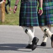 Stock Photo: Calgary Highland Games