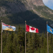 Flags of Canada, Alberta and British Columbia — Stock Photo
