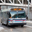 Stock Photo: Calgary transit bus