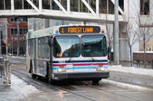 Calgary transit bus — Stock Photo