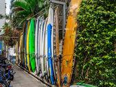Surfboard rentals — Stock Photo