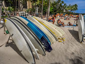 Surfboard rentals, Waikiki — Stock Photo