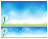 Dandelion banners. — Stock Vector
