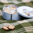 Shortbread cookies on plaid — Stock Photo