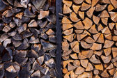 Background of dry chopped firewood logs — Stock Photo