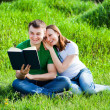 Lovers in the park are reading book — Stock Photo #25461435