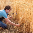 Stock Photo: Portrait of smile harvest farmer with sickle