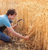 Portrait of smile harvest farmer with sickle — Stock Photo