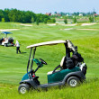 Stock Photo: Golf club cars