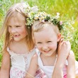 Little girls playing on summer meadow — Stock Photo #12280829