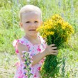Little girl in wildflowers — Stock Photo #12281571