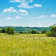 Royalty-Free Stock Photo: Summer Landscape