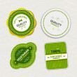 Set of organic food badges and labels — Stock Vector #16982771