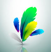 Vector colorful feather design — Stock Vector