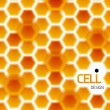 Abstract geometrical honey cells modern template — Imagens vectoriais em stock