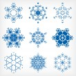 Set of isolated snowflakes for Christmas decor — 图库矢量图片