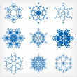 Set of isolated snowflakes for Christmas decor — Image vectorielle