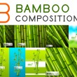 Set of vector nature bamboo designs — Stock Vector #46573479