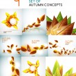 vector herfst bladeren design collectie — Stockvector  #47180749