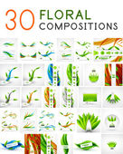 Mega collection of vector green leaf compositions — Stock Vector