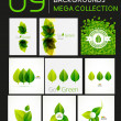 Mega collection of vector green leaf compositions — Stock Vector #48206707