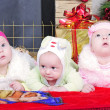 The boy and the Twins girls near a Christmas tree — Stock Photo