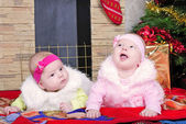 Twins girls near a Christmas tree — Stock Photo