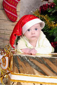 Small breast child near new year's fir tree — Stock Photo