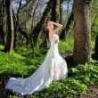 Beautiful girl bride in green wood by summer — Photo