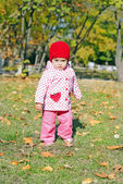 The small beautiful girl in autumn park — Stock Photo