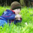 Little boy on green grass — Foto de stock #29730115