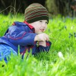 Little boy on green grass — стоковое фото #29730115
