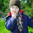 Little boy on a green meadow — Stock Photo #30026477