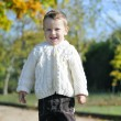 Little boy in the autumn park — Stock Photo