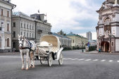 Carriage with horse — Stock Photo
