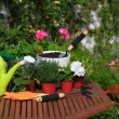 Planting flowers with garden tools ,various flowers and herbs in — Stock Photo #24069501