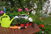 Planting flowers with garden tools ,various flowers and herbs in — Stock Photo