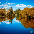 Fascinating landscape, trees reflected in river — Stock Photo #36767031
