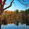 Peak Fall foliage - Stock Photo