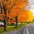 Scenic Road in fall — Stock Photo