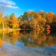 Peak Fall Foliage at a lake — Stockfoto