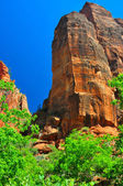Jagged rock formation at Zion NP — Stock Photo
