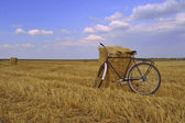 Bicycle and mown field of wheat — Stock Photo