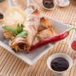 Spring roll — Stock Photo #16506905