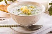 Dill soup — Stock Photo